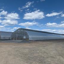 New-greenhouses