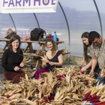 Corn-Braiding-at-the-Farm-Hub3