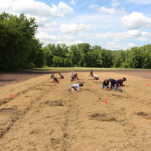 "A traditional ""Three Sisters"" planting at the Native American Seed Sanctuary."
