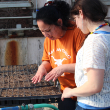 Sylvia and Anne working in the green house.