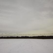 MG_2588