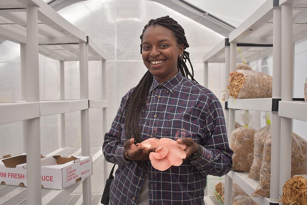 Hudson Valley Farm Hub | Growing mushrooms: young farmer discovers a